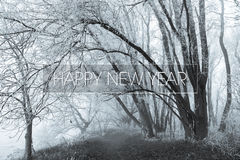 Happy new year on a freezing forrest background. Royalty Free Stock Photo