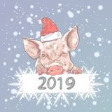 Happy New Year 2019 funny card design with cartoon pig in Santa`s hat . Vector illustration stock illustration