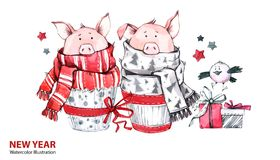 2019 Happy New Year illustration. Christmas border. Cute pigs in scarves with gifts and bird. Greeting watercolor cakes. Symbol of winter holidays. Zodiac sign royalty free illustration