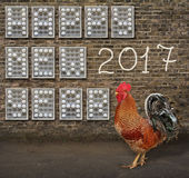 Happy New Year made from eggs Royalty Free Stock Photos