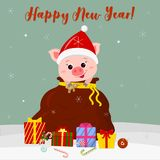 Happy New Year and Merry Christmas Greeting Card. Cute pig in Santa hat looks out of Santa s bag. Boxes with Christmas stock illustration