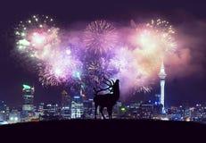 Happy new year my friend Royalty Free Stock Photo