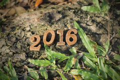 Happy New Year 2016, nature concept and wood number idea Royalty Free Stock Image