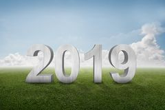 Happy New Year 2019. Number 2019 standing on green grass. Happy New Year 2019 stock illustration