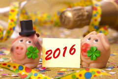 Happy new year 2016 with pig as lucky charm Stock Images