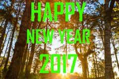 Happy new year 2017 on pine tree sunrise background. Festival on nature Royalty Free Stock Photo