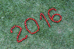 Happy new year with Pitanga , typical Brazilian fruit. Welcome the New Year Two thousand and sixteen stock photo
