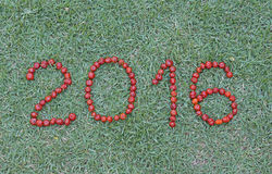 Happy new year with Pitanga , typical Brazilian fruit. Welcome the New Year Two thousand and sixteen royalty free stock image