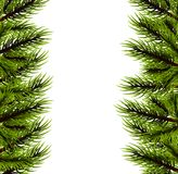 Christmas fluffy tree template. Happy new Year poster frame decoration. Festive greeting border. Realistic Merry Christmas branch pine tree template. Xmas mock Stock Images