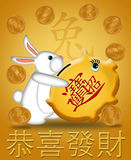 Happy New Year Rabbit 2011 Carrying Piggy Bank. Happy New Year of the Rabbit 2011 Carrying Piggy Bank Illustration Gold Background Stock Photo
