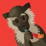 Happy New Year smiling cartoon monkey Royalty Free Stock Photography