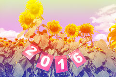 Happy new year 2016 on sunflower field, welcome 2016 Royalty Free Stock Image