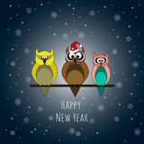 Happy New Year. Three owls. Lettering. Stock Photography