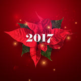 Happy New 2017 Year. Vector Holiday Illustration With 2017 Label, Sparkles And Poinsettia Flowers Stock Image