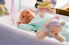 Happy Newborn. Four week baby smiling and looking at toy carrousel royalty free stock photography