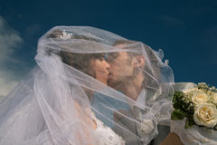 Happy newly-married couple Stock Photography