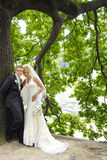 Happy newlywed couple Royalty Free Stock Photos