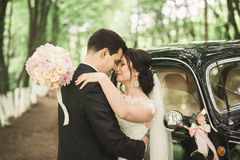 Happy newlywed couple, man and wife kissing near stylish retro car Royalty Free Stock Photo