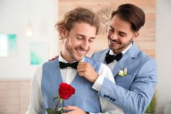 Happy newlywed gay couple with flower. At home royalty free stock photo