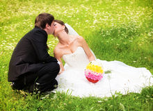 Happy newlyweds on grass in park Stock Images