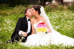 Happy newlyweds on grass in park Royalty Free Stock Photography