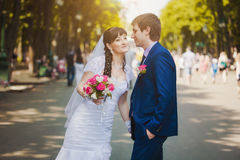 Happy newlyweds in the green park Stock Photos