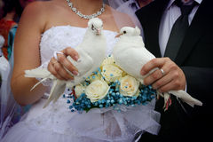 Happy newlyweds holding white doves. Close up with rose bouquet Royalty Free Stock Photo
