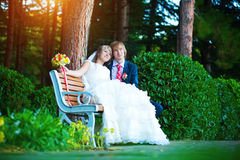 Happy newlyweds are hugging in the green park Royalty Free Stock Images
