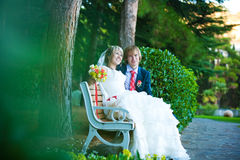 Happy newlyweds are hugging in the green park Stock Images
