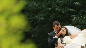 Happy newlyweds rests in green sunny park. Groom lovingly touches his new wife's face stock footage