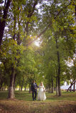 Happy newlyweds in summer park Stock Images
