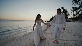 Happy newlyweds at sunset near the ocean. They walk barefoot along the sandy shore, holding hands, and look at each. Other with love. There are palm trees stock video