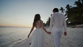 Happy newlyweds at sunset near the ocean. They walk barefoot along the sandy shore, holding hands, and look at each. Other with love. There are palm trees stock video footage