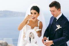 Happy  newlyweds taste a wedding cake Stock Photos