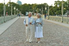 Happy nice mature couple Royalty Free Stock Photos
