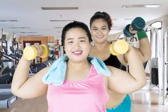 Happy obese women exercising with dumbbells. Two obese women looks happy while lifting dumbbells and exercising together in the fitness center Stock Image