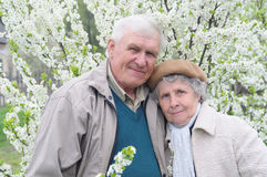 Happy old couple. Against a background of flowering garden Royalty Free Stock Photo