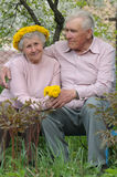 Happy old couple. Against a background of flowering garden with dandelions Royalty Free Stock Photography