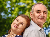 Happy old couple with flower Royalty Free Stock Image