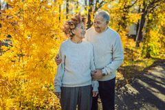 Happy old couple having fun at autumn park. Elderly man wearing a wreath of autumn leaves to his elderly wife royalty free stock images
