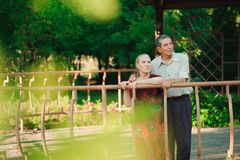 Happy old couple in a park on a sunny day royalty free stock photo