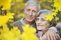 Happy old couple Stock Image