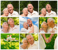 The happy old couple in the summer on a walk Stock Photo