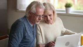 Happy old couple using laptop talking together doing online shopping
