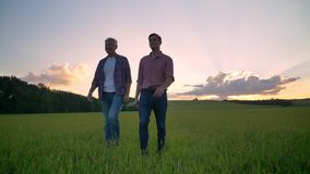 Happy old father and adult son smiling and walking on wheat or rye field, beautiful sunset in background
