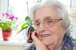 Happy old gray-haired woman Stock Images