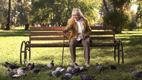 Happy Old Lady Sitting On Bench In Park, Feeding Pigeons, Elderly Leisure Time Royalty Free Stock Photo