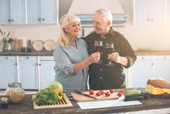 Happy old married couple drinking wine in cook room royalty free stock image