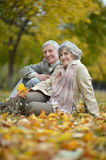 Happy old people. Beautiful happy old people sitting in the autumn park Royalty Free Stock Photography