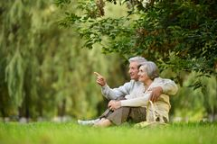 Happy old people. Beautiful happy old people sitting in the summer park. men pointing Stock Images